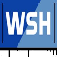 whe share handball